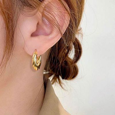 Fashionable Twisted Hoop Earrings