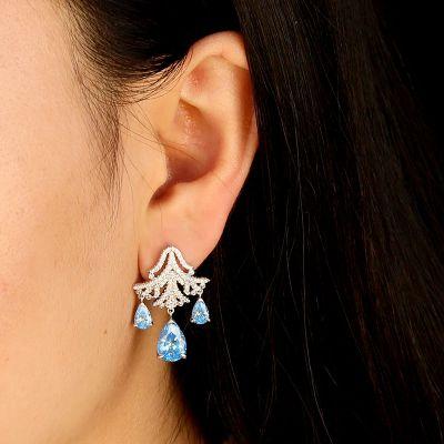 Frozen Drop Earrings