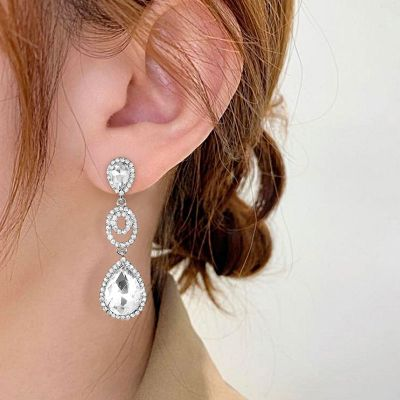 Fashion Dangle Earrings